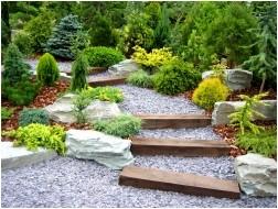Все просто —  Хвойные растения для сада: какие выбрать, где и как сажать  || STROIM-GRAMOTNO.RU