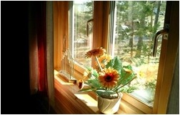 Все просто —  Пластиковые окна или деревянные, что лучше?  || STROIM-GRAMOTNO.RU